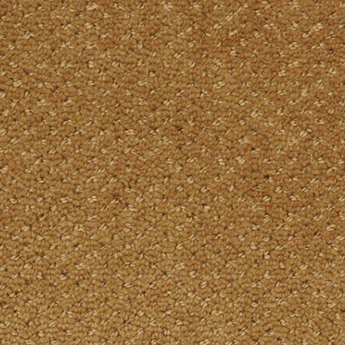 Dream Of Mine T Swatch View Berber Carpet Shaw Carpet Carpet Samples