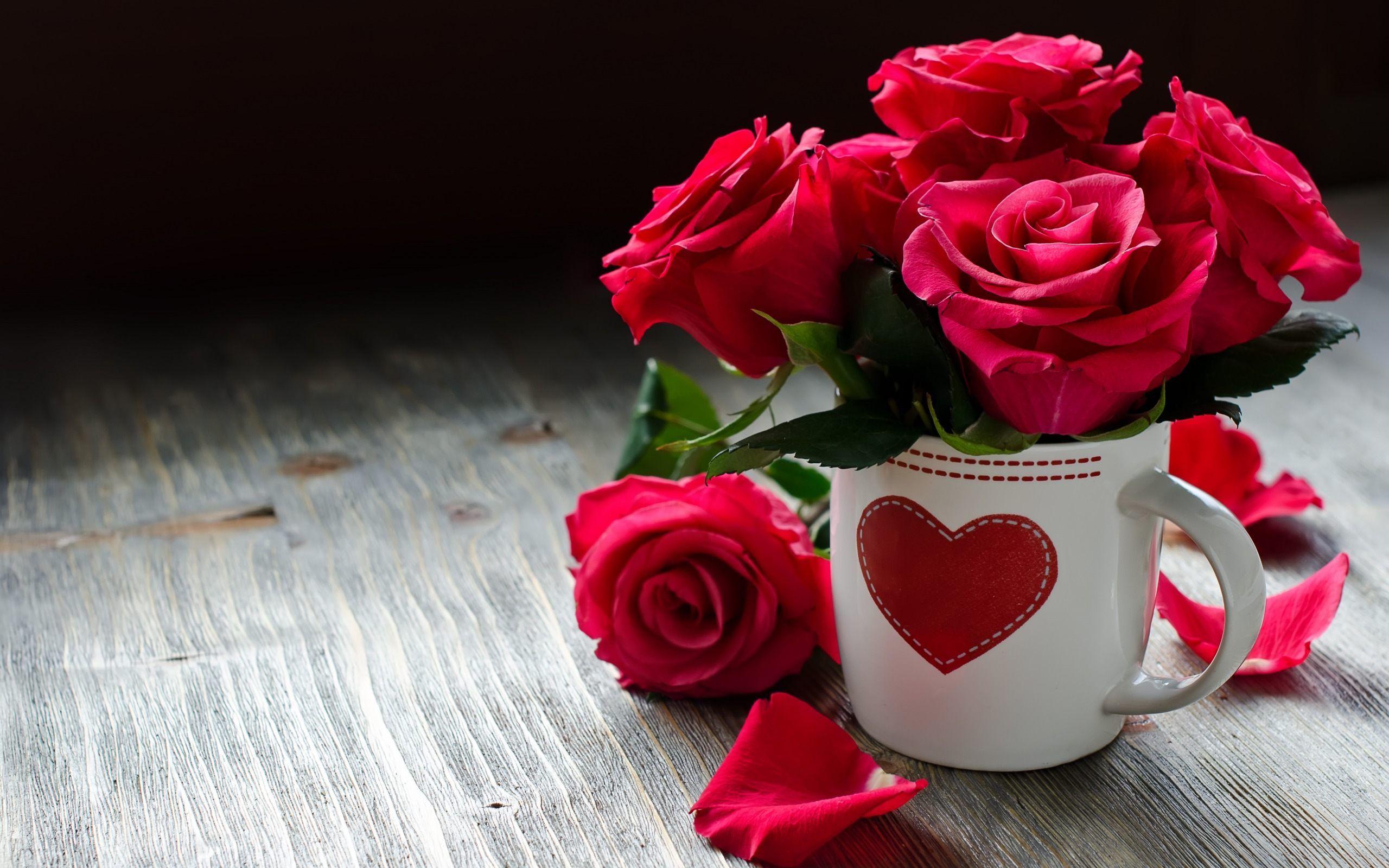 Beautiful Flowers Find Best Latest Beautiful Flowers In Hd For