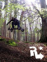 Wilz rounds up the months happening's the world of mountainboarding