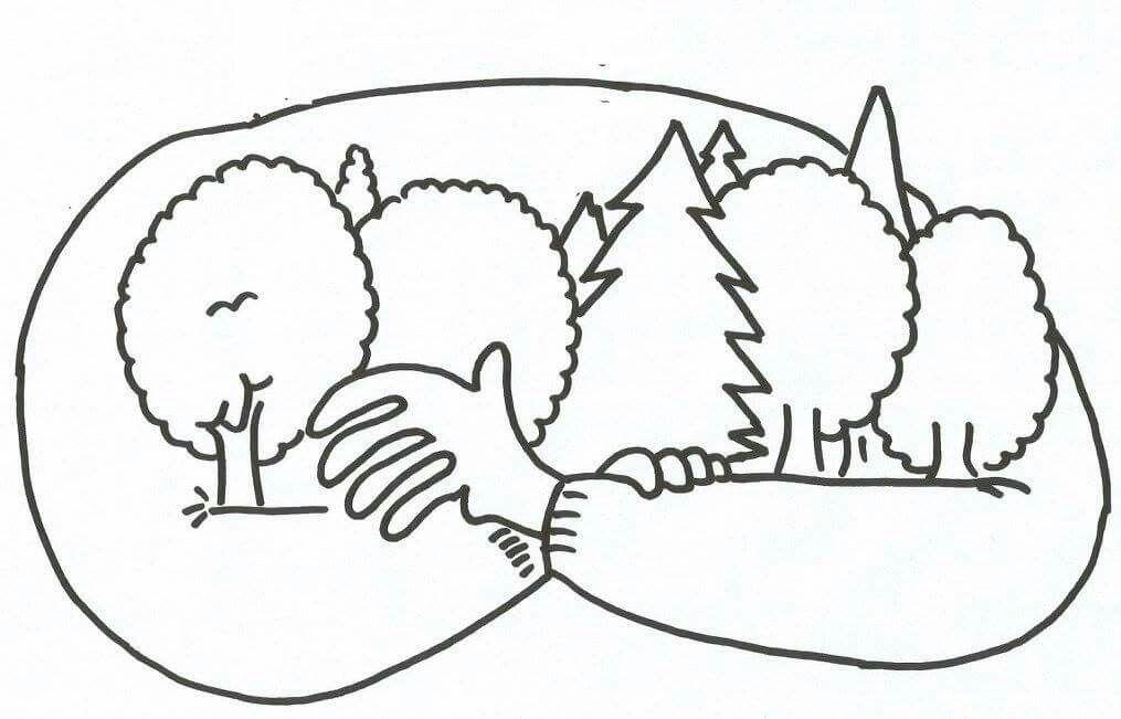 Orman Haftasi Boyama Sayfalari Ormanlar Sanat