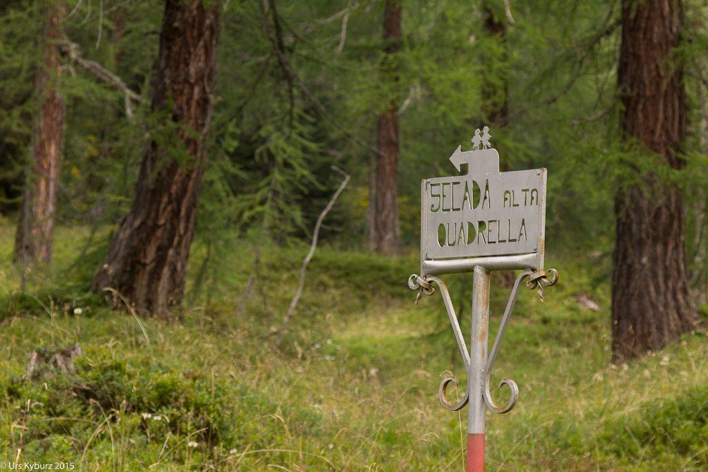 In der Natur unterwegs: Vier Täler, drei Pässe im Locarnese - #ExpeditionLocarnese