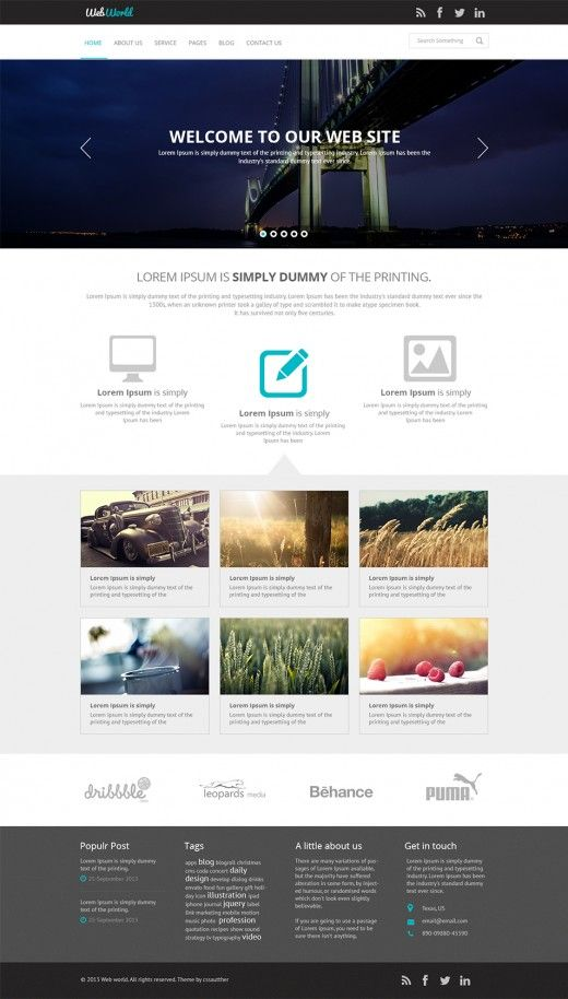 Free Business Web Template PSD Css Author One Page