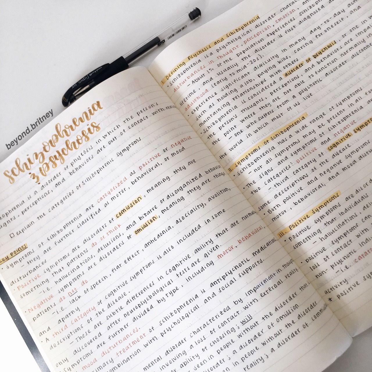 studyspo   studying   studyblr   studygram   study   school   college   school notes   notes