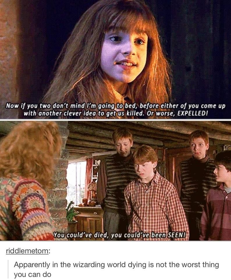 Apparently Harry Potter Memes Harry Potter Jokes Harry Potter Quotes