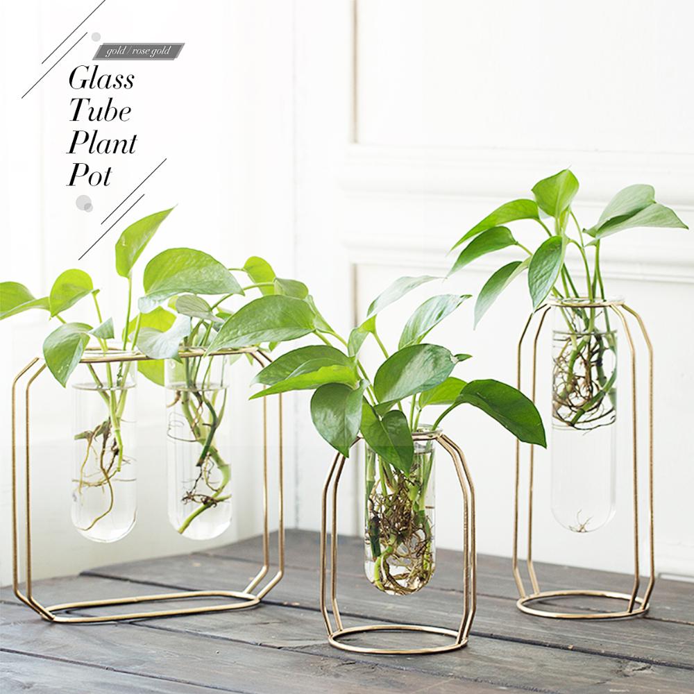 Pin On Growing Green Inside