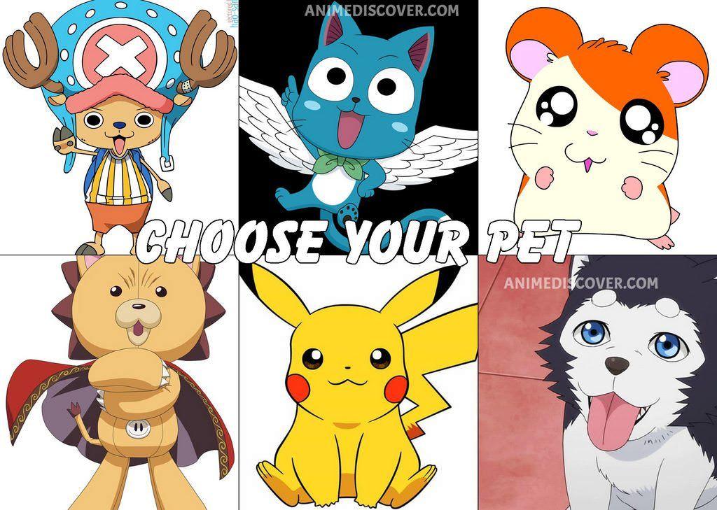 Choose your pet Anime funny, I love anime, Anime