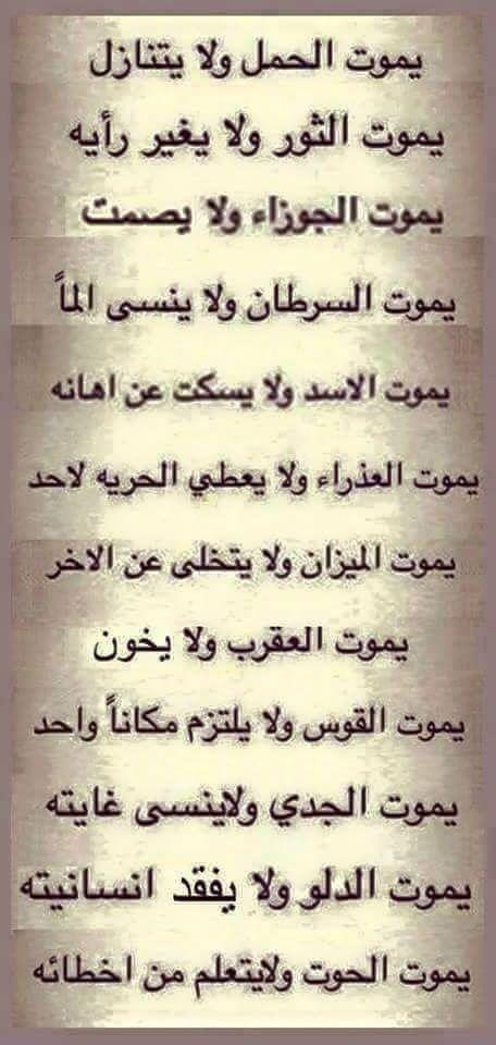حوت ومبيتعلمش Quotes For Book Lovers Funny Arabic Quotes Beautiful Arabic Words