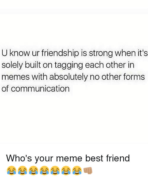 Who S Your Meme Best Friend Share With Your Friends Noruleshere Com Memes Funny Quotes Love Internet Friends Quotes Best Friends Funny Friendship Humor