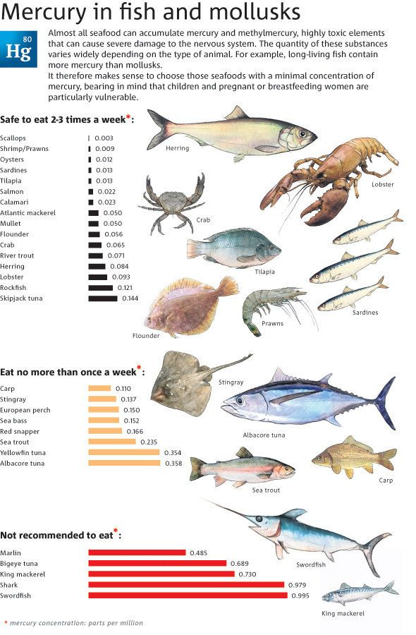 Mercury levels in fish and mollusks be aware of what is for Mercury in fish list