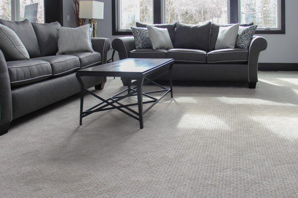 Grey Carpet Living Room