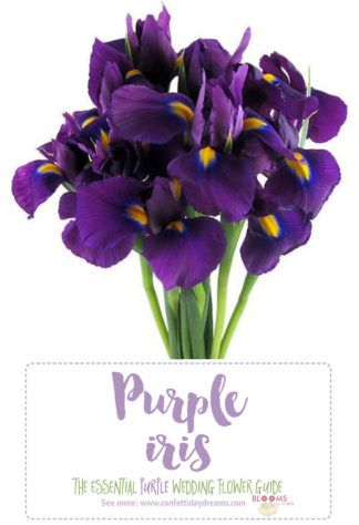 complete guide to purple wedding flowers purple flower - 324×474