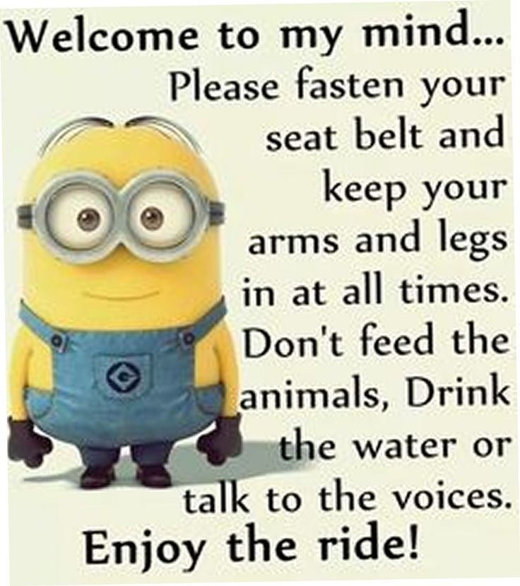 Birthday Funny Minion Quote Pictures Photos And Images: Hilarious Minion Meme
