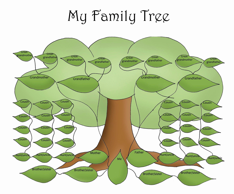 Editable Family Tree Template Elegant Free Editable Family Tree Template Daily Roabox Family Tree Printable Family Tree Project Family Tree Template