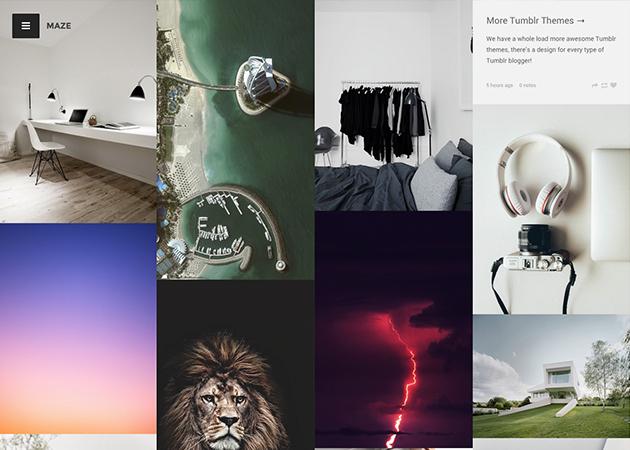 Lion Tumblr Themes