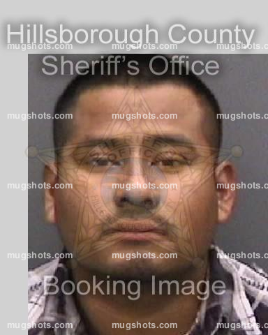 Daniel Rodriguez; http://mugshots.com/search.html?q=70702941; ; Booking Number: 14000519; Race: W; DOB: 03/22/1991; Arrest Date: 01/04/2014; Booking Date: 01/05/2014; Gender: M; Ethnicity: H; Inmate Status: IN JAIL; Bond Set Amount: .00; Cash: sh.00; Fine: sh.00; Purge: sh.00; Eyes: BRO; Hair: BLK; Build: MED; Current Age: 22; Height: 147.32; Weight: 70.30681735; SOID: 00841136; POB: MX; Arrest Age: 22; Arrest Agency: HCSO; Jurisdiction: HC; Last Classification Date & Time: 01/05/2014…