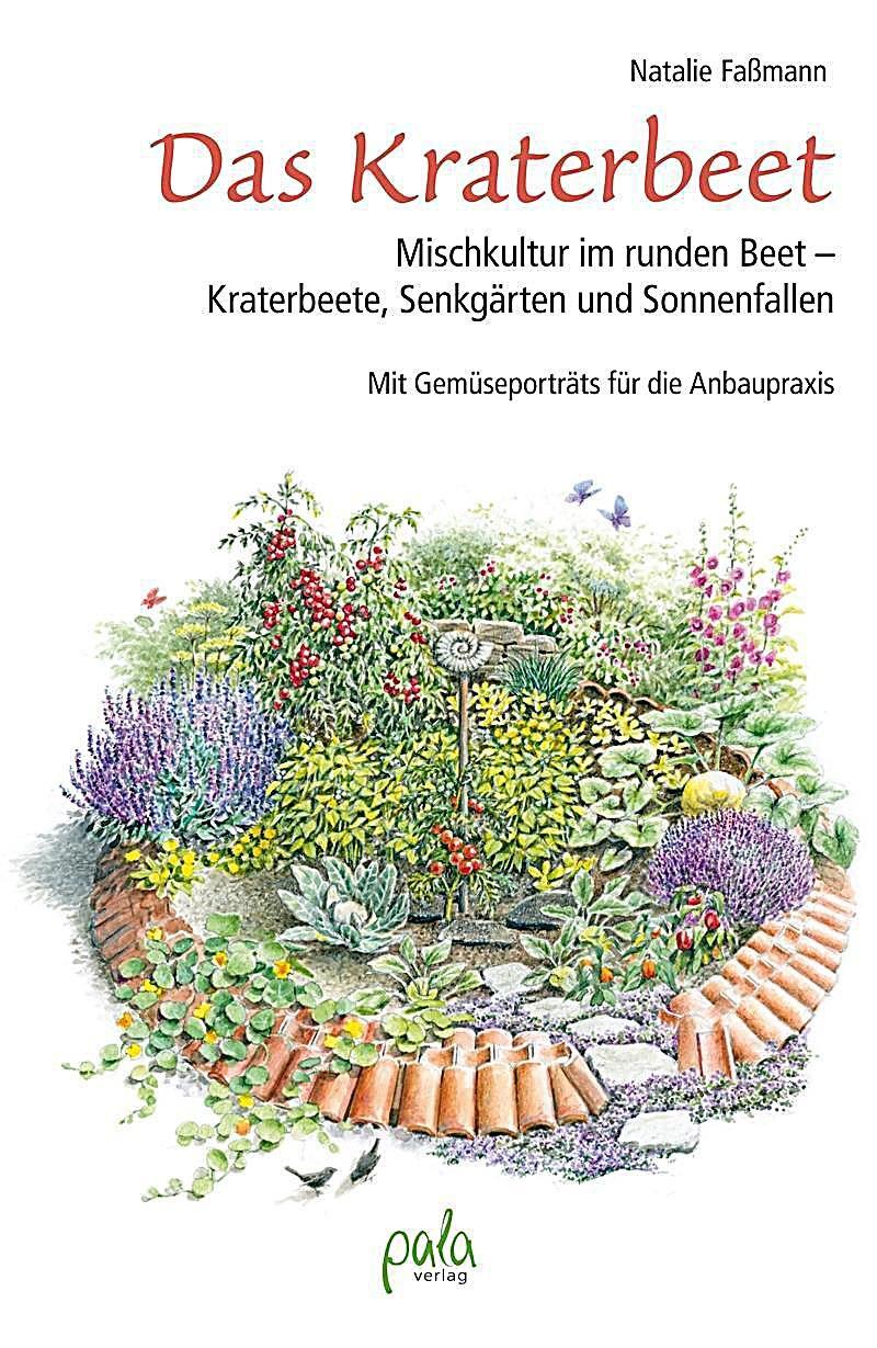 Das Kraterbeet Buch von Natalie Faßmann versandkostenfrei bei ...