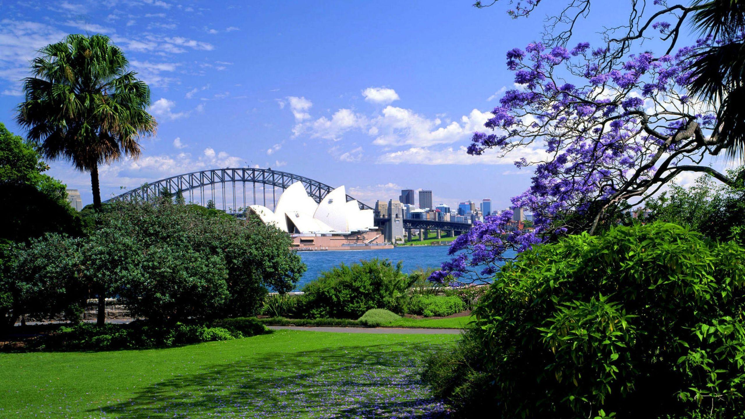 413f33ccce7eae464d15303b650cf9f8 - Sydney Opera House To Botanic Gardens Walk