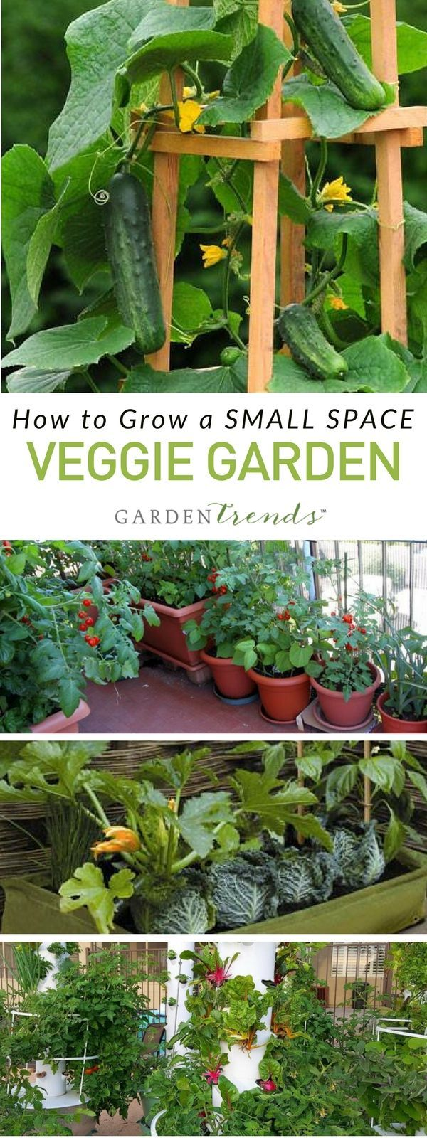 Whether You Live In An Apartment, Condo Or Small Patio Home, Donu0027t Let Your Small  Space Discourage You From Growing An Amazing Vegetable Garden!
