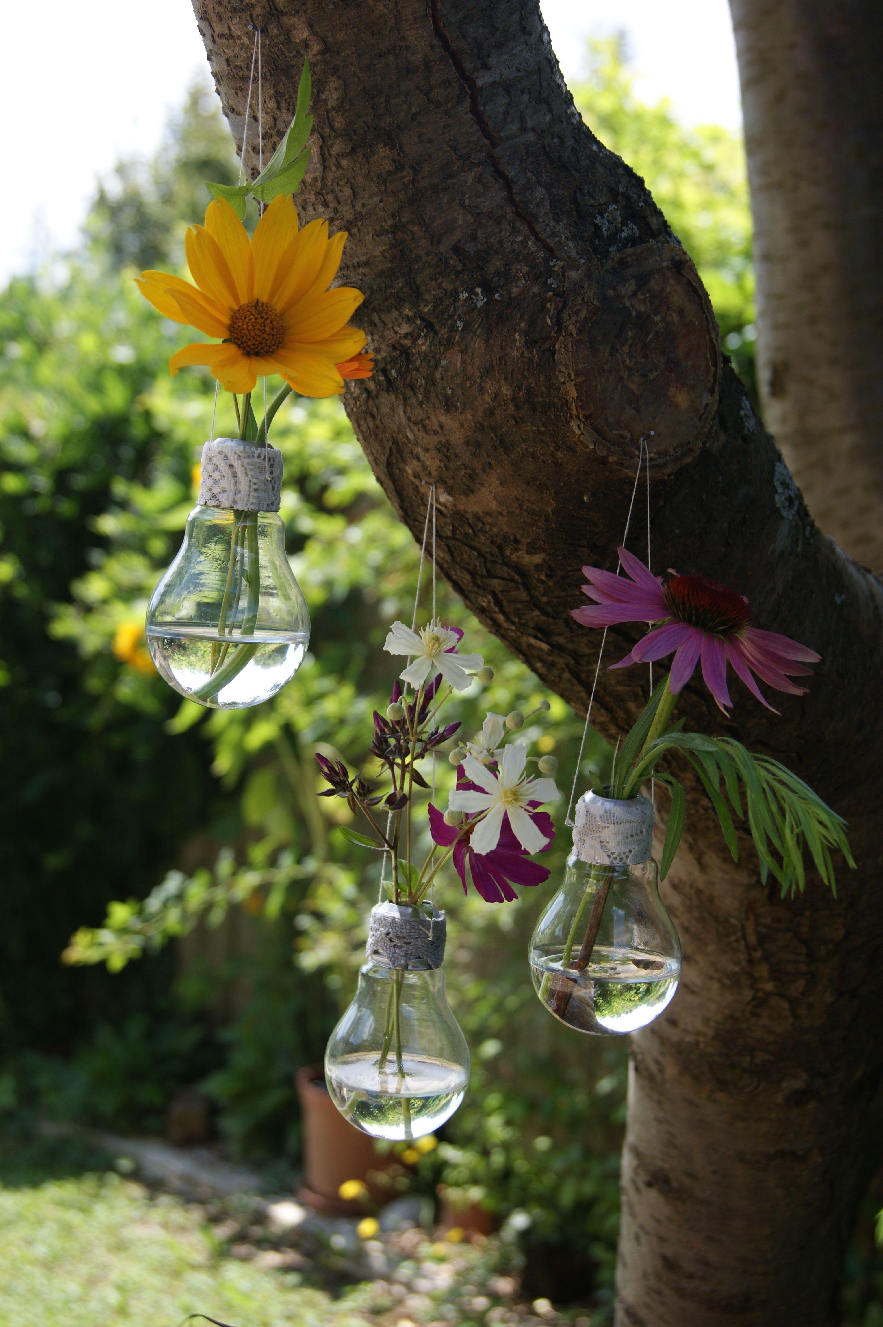 bulbs and flowers