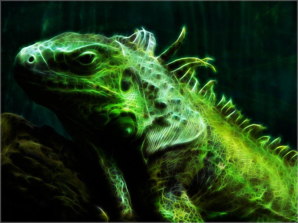 Iguana Fractal Wallpaper by PimArt on DeviantArt