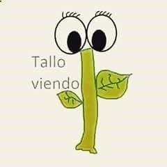 Ta Lloviendo Spanish Jokes Humor Memes