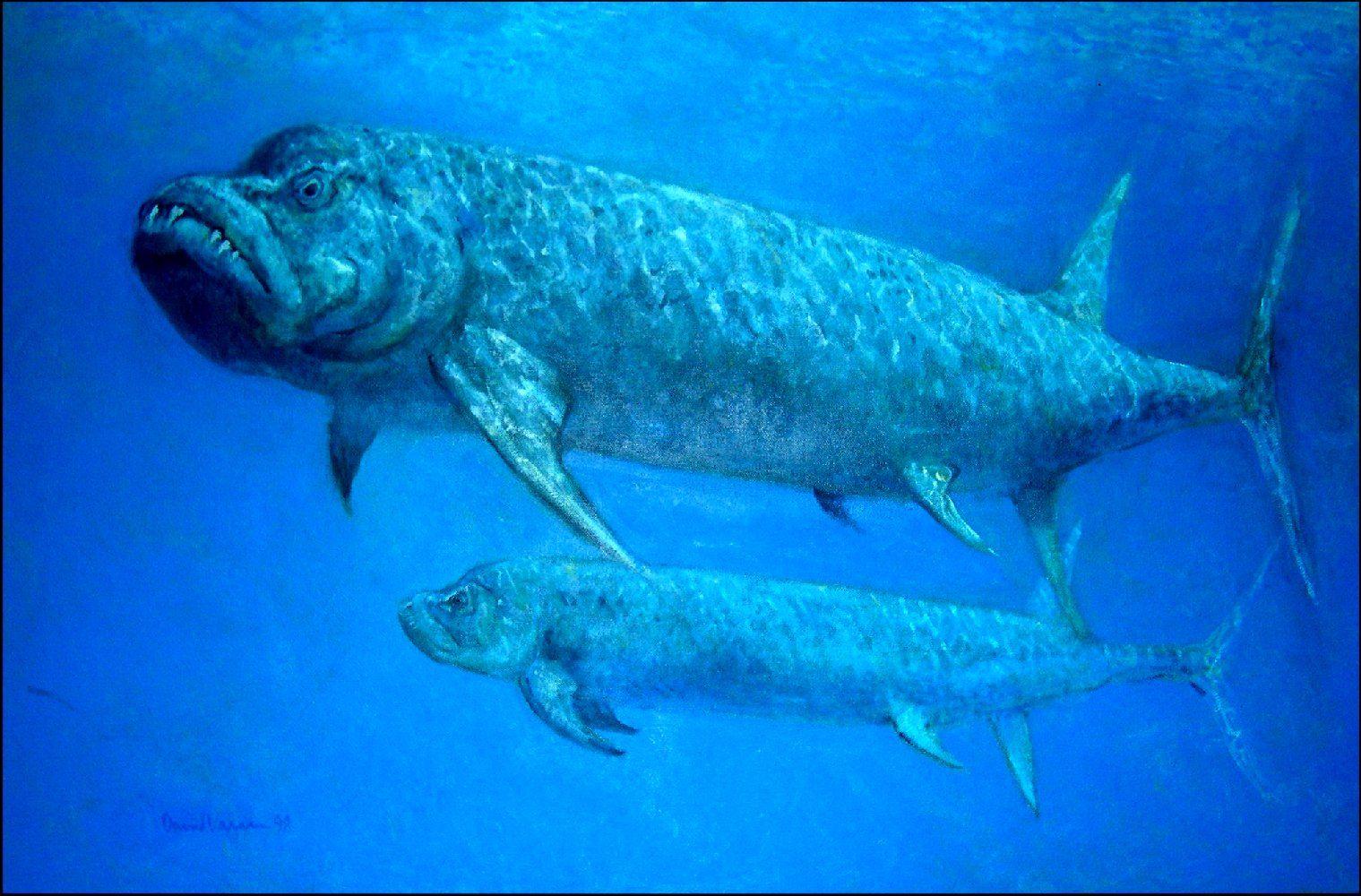 Ocean Dinsaurs The Prehistoric Ocean Illustrations Of Dinosaurs