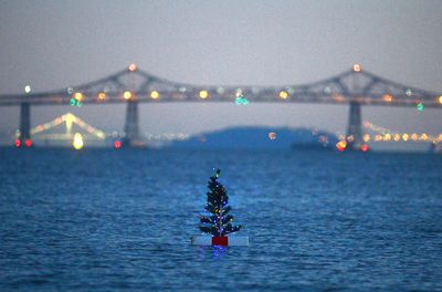 Offshore Christmas Tree In San Rafael A Source Of Joy And Questions San Pablo Bay Floating In Water San Rafael