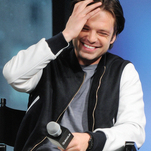 Sebastian Stan. His smile ruined me and then put me back together.
