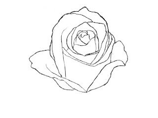 How To Draw A Rose | Draw Central | Drawings, Art drawings ...