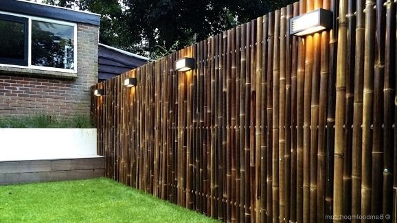 Wonderful Bamboo Privacy Fencing Outdoor Bamboo Fencing