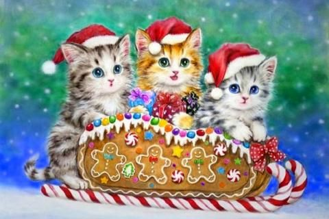 Christmas Candy Kitten Cute Colors Animals Xmas And New Year Pretty Winter Adorable Lovely Weird Thing Christmas Scenes Christmas Kitten Hello Kitty Christmas