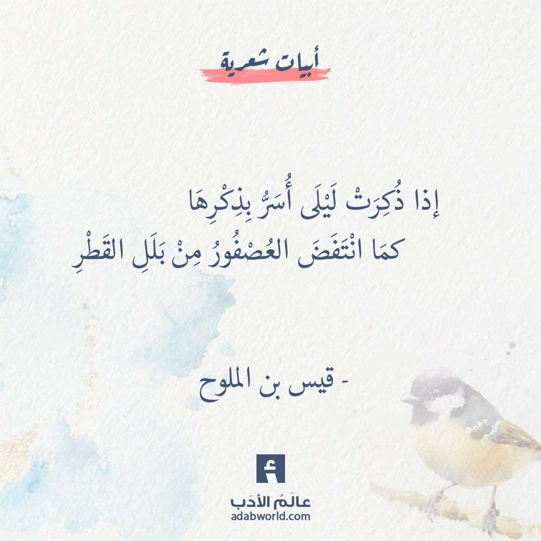 أجمل ما قيل في ذكر المحبوبة مجنون ليلى عالم الأدب Love Words Words Quotes