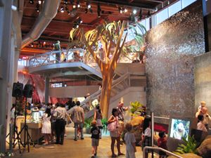 Bishop Museum.  Honolulu, Hawaii.- family membership $85- planetarium show while we are there with trip to observation deck
