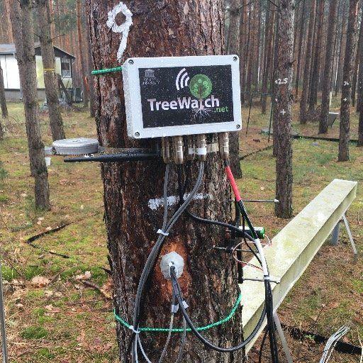 Jetzt twittern sogar Bäume: http://netzpropaganda.de/jetzt-twittern-sogar-baeume/ #TreeWatch #Twitter