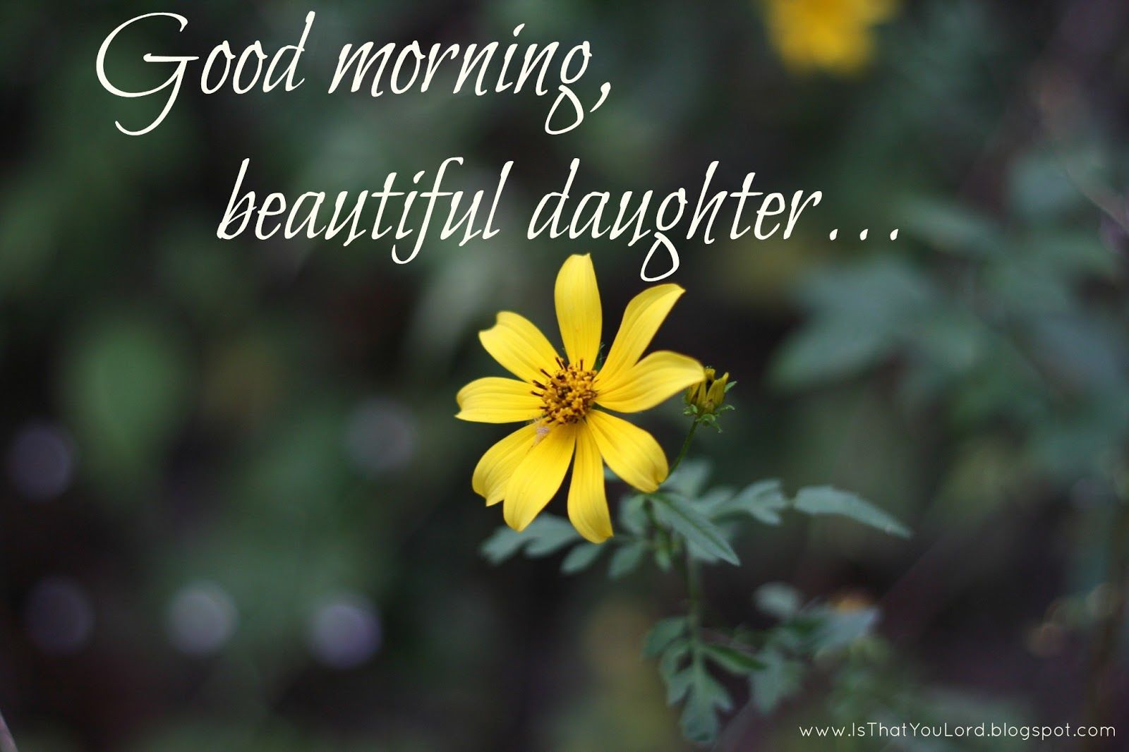 You Are Beautiful Inside And Out Remember That Love You Good Morning Daughter Good Morning Beautiful Good Morning Images