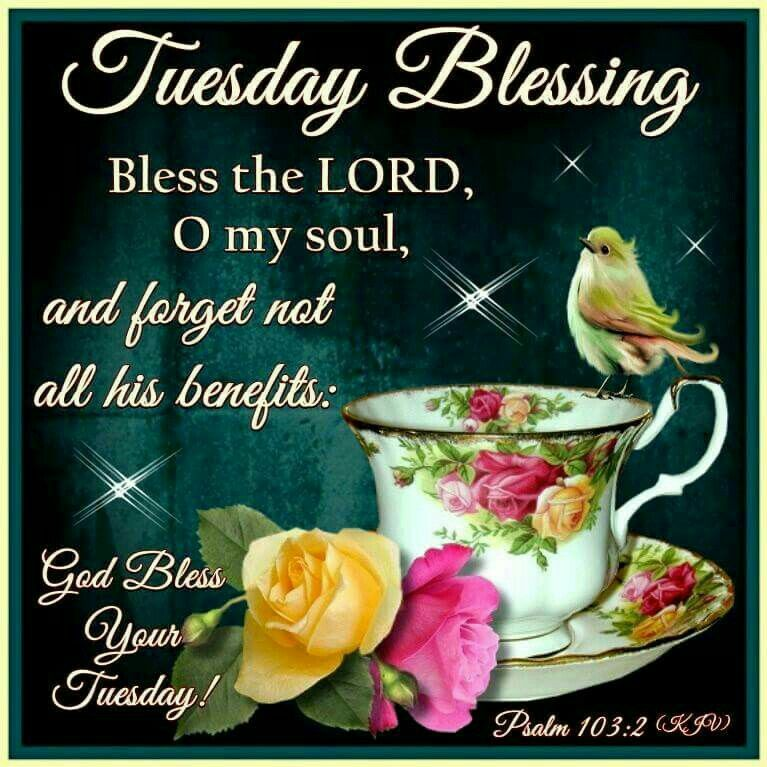 Tuesday Blessings To You All♡