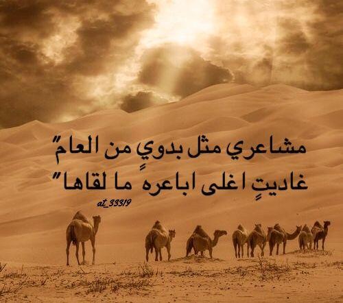 شعر نبطي قصيد ابيات قوافي عشق قافية غزل مدح كلمات خواطر بو ح Arabic Words Words Movie Posters