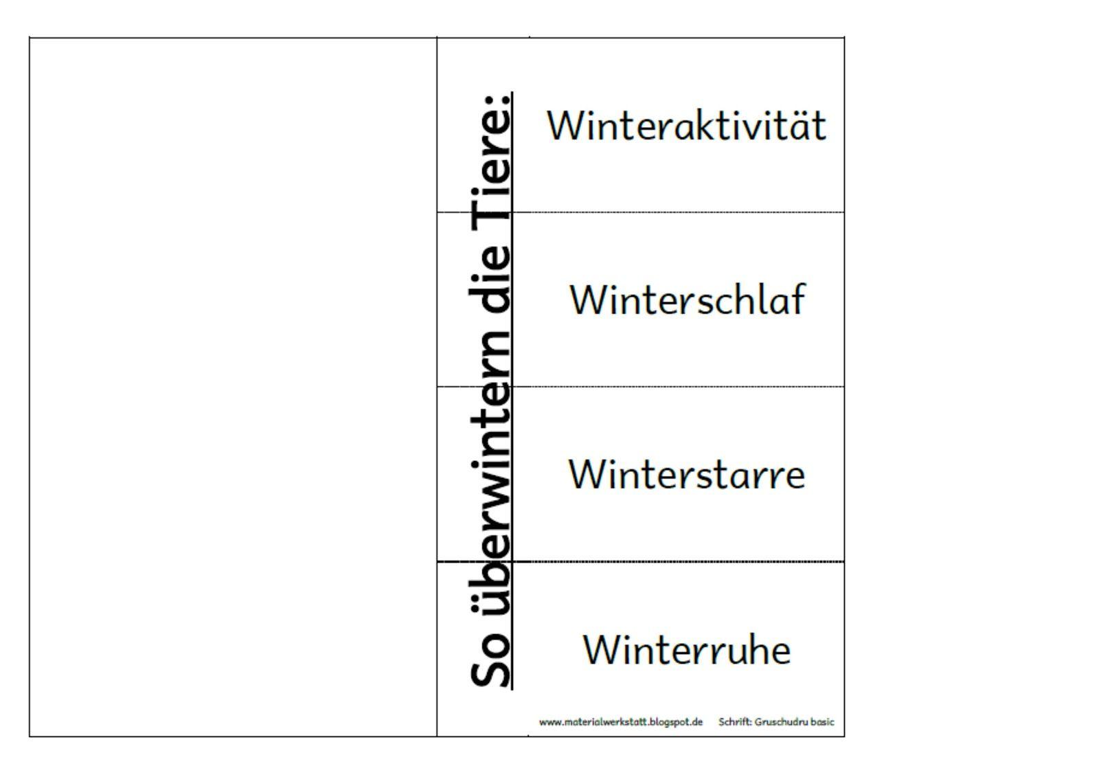 In Den Letzten Tagen Habe Ich Materialien Fur Ein Winter Lapbook Erstell T Und Nach Und Nach Hier Veroffentlicht Es Ist Sowo Schule Schulideen Forderschule