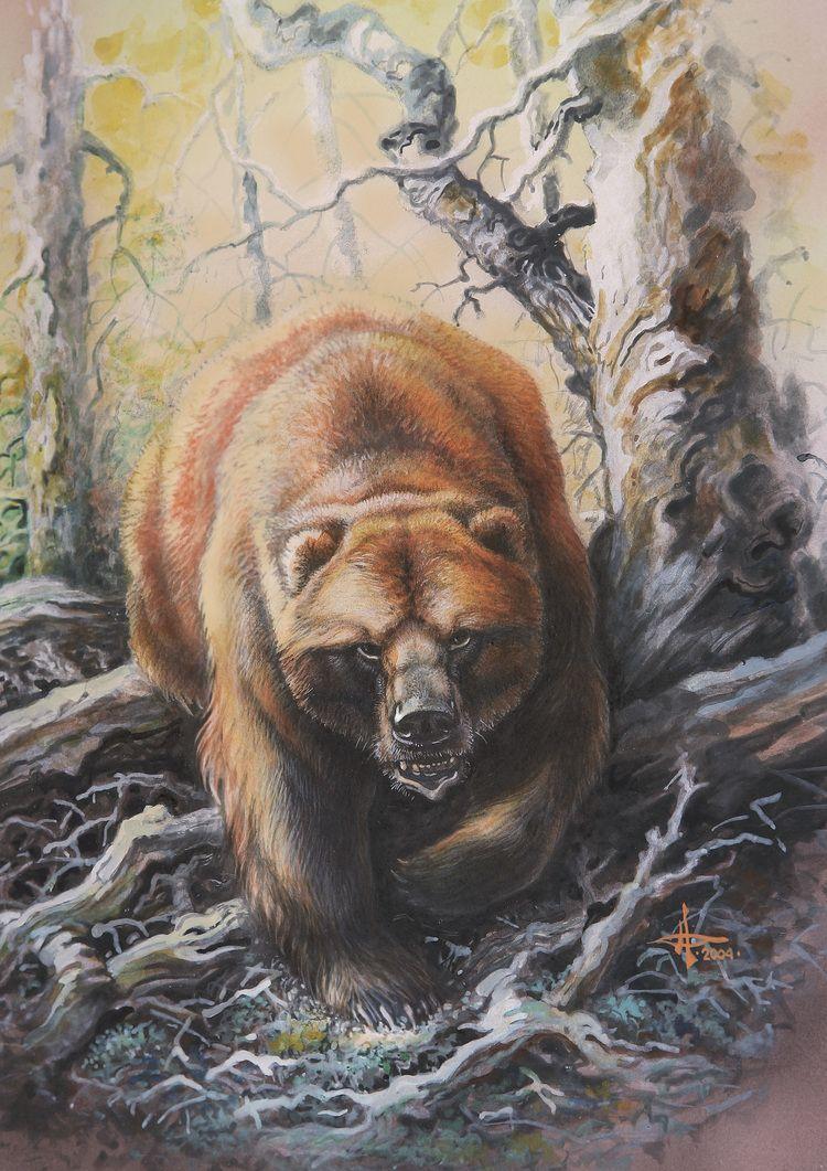 самым красивые рисунки медведей построен