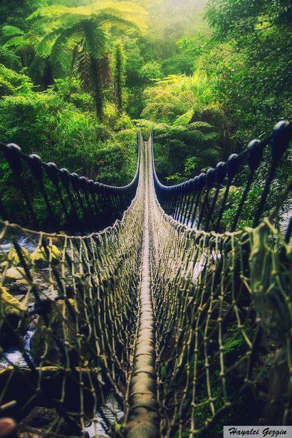 Hayalci Gezgin: Tehikeli Görünen Masum Bir Köprü  / Dangerous Brid...