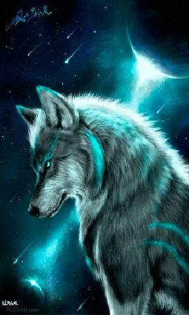анимация сидящий волк изображенный на фоне космоса Il Lupo Lobos