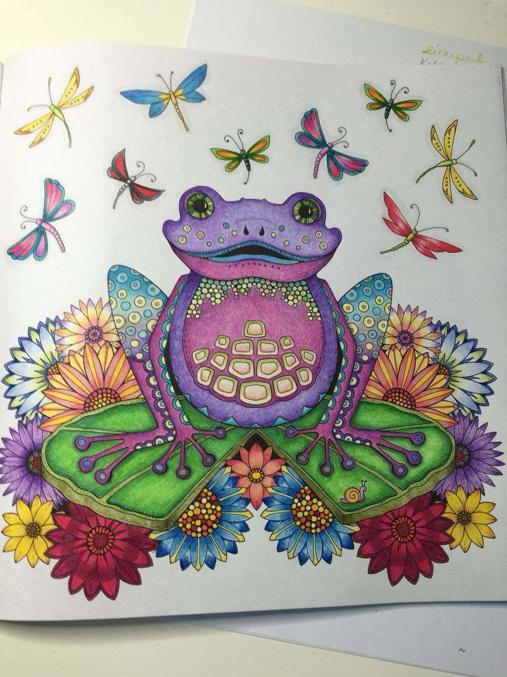 Colored By Marnie Nunes Johanna Basford Enchanted Forest Frog