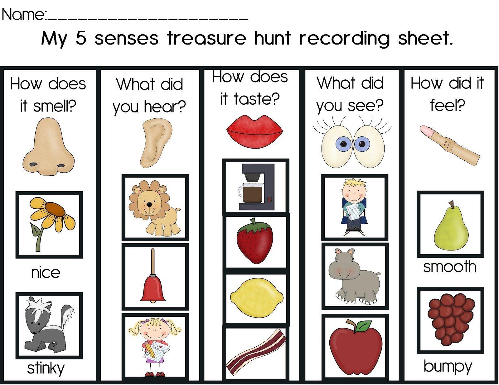Activities For 5 Senses