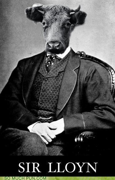 Sir Lloyn