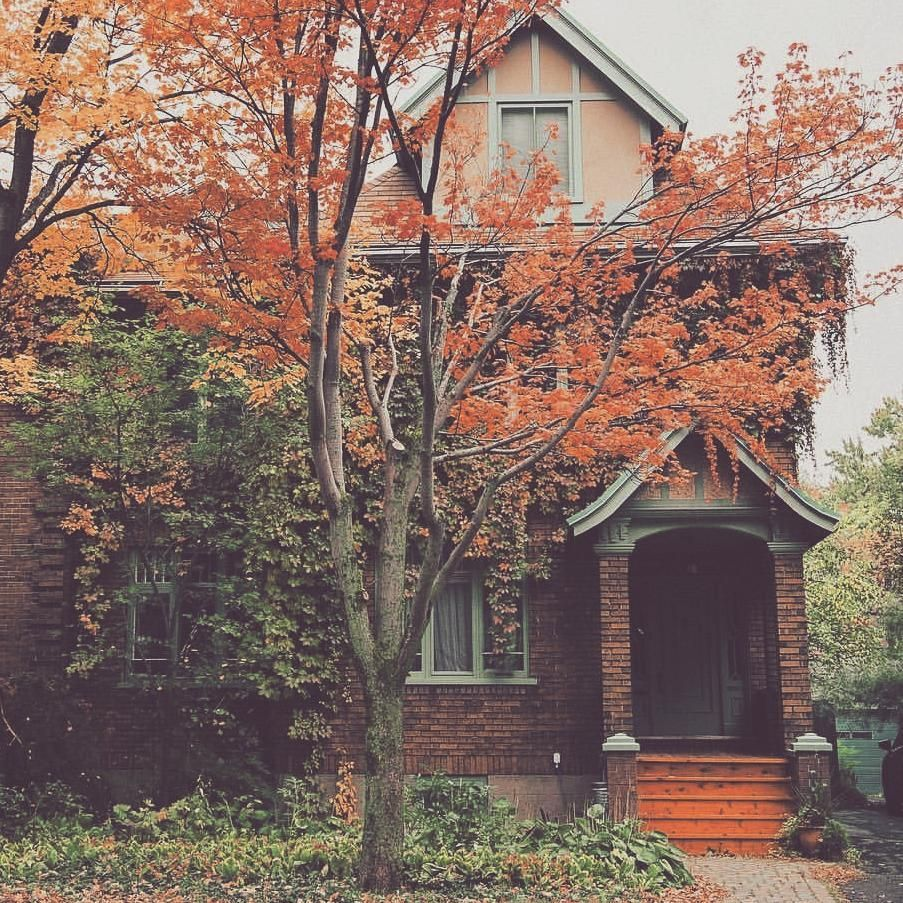 Not My Picture Thought It Was Pretty Tho Don T Have Anything Nice Of My Own To Share Right Now Pict Autumn Photography Pictures Autumn Aesthetic