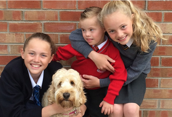 Family Dog Saves Boy With Down Syndrome Family Dogs Dogs Pet News