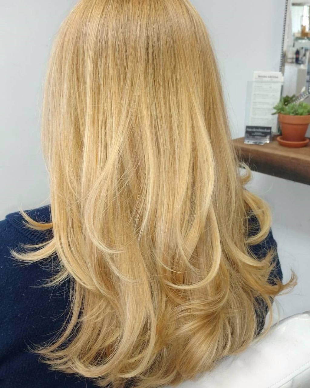 Sunset Blonde 9.0 + 20 Volume Developer Highlights with