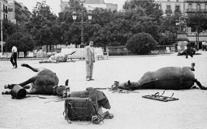 #TalDiaComAvui de 1936 comença a trenc d'alba la sublevació nacional a Barcelona.  Cavalls morts a Plaça Catalunya.