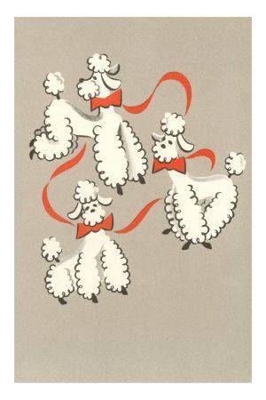 Vintage Poodles print