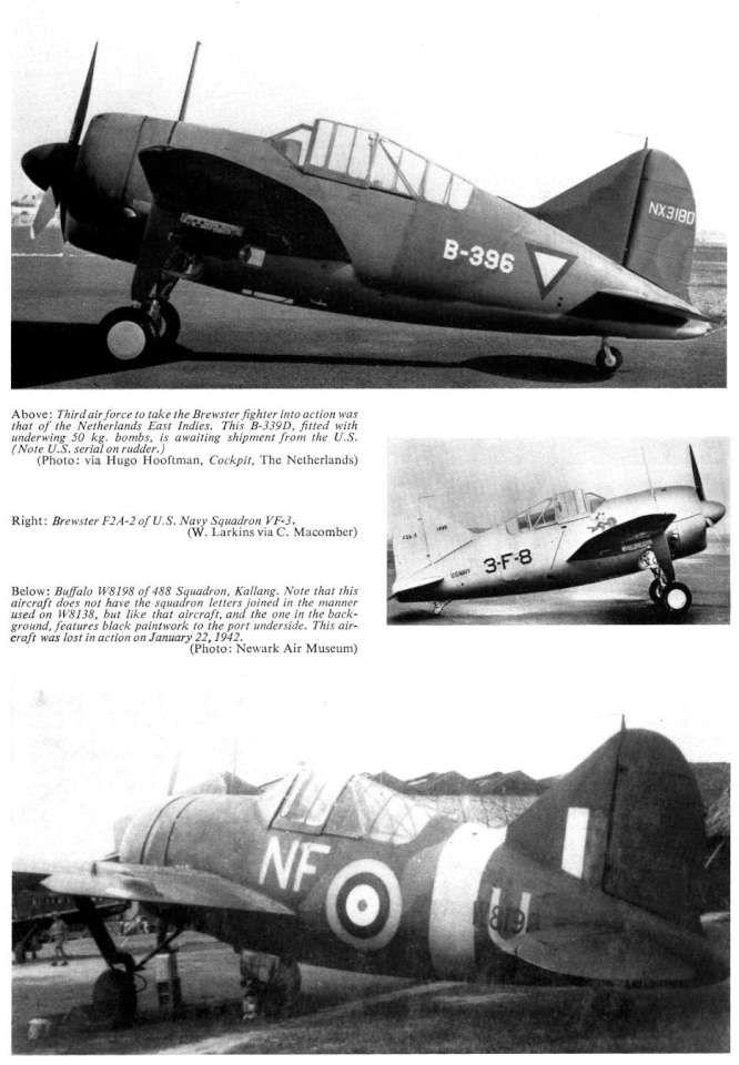 Brewster Buffalo | Planes | Pinterest | Aviones, Aviones de combate ...